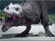 Dinosaurs-fight-hd-video-dinosaursart