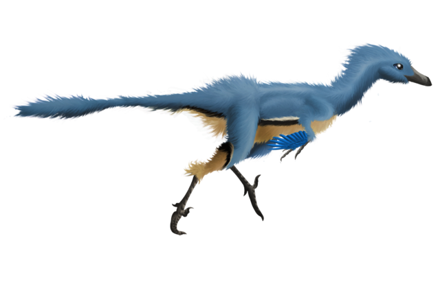 File:Troodon try to be realistic by bluefluffydinosaur-d4poweo.png