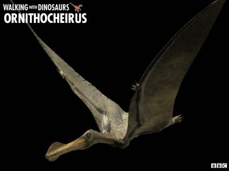 File:Ornithocheirus.jpg