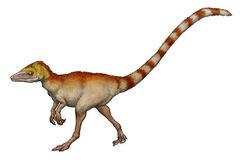 Sinosaurop.jpg