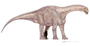 Patagosaurus-M.Shiraishi