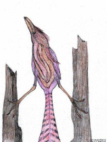Zhyraornis kashkarovi by briankroesch