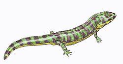 Enosuchus1DB