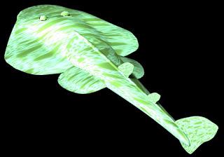 Myledaphus