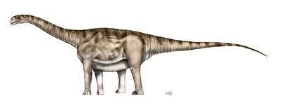 AragosaurusSP