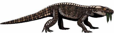 Sphagesaurus-montealtensis2
