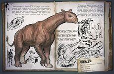 800px-Dossier Paraceratherium