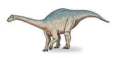 File:220px-Riojasaurus sketch3.jpg