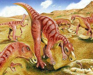 Gilmoreosaurus Herd