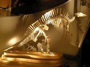 285px-Ouranosaurus - full