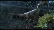 RaptorCalls2