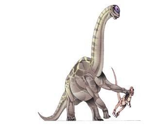 Marmarospondylus