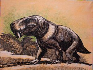 Broomisaurus rubidgei