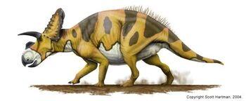 Ceratopsian-1-