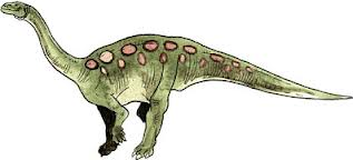 File:Sellosaurus.jpg