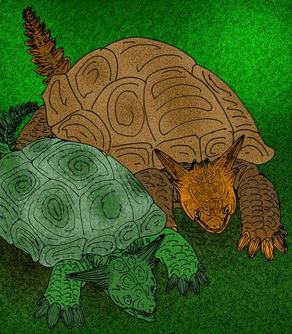 File:Meiolania platyceps by avancna.jpg