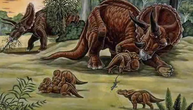 File:Raven-sized-aquilops-americanus-identified-as-oldest-horned-dinosaur-in-north-america.png