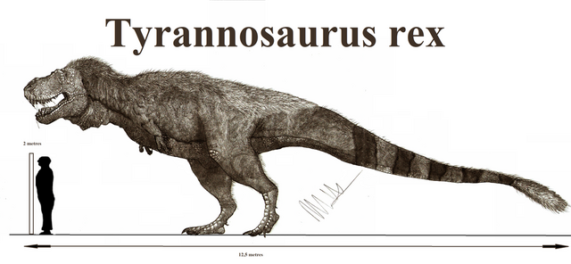 File:Tyrannosaurus rex by teratophoneus-d9bnkd0.png