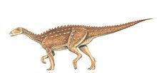 Lusitanosaurus-0