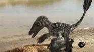 BlackUtahraptor