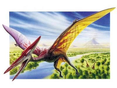 File:Pteranodon(1).jpg