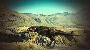 Giganotosaurus (sharkkofassuit)
