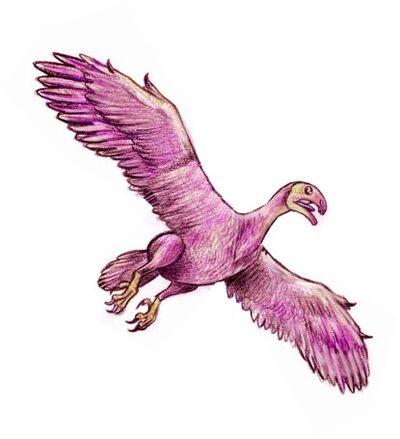 Omnivoropteryx