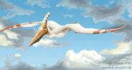 Pteranodon eurwentala
