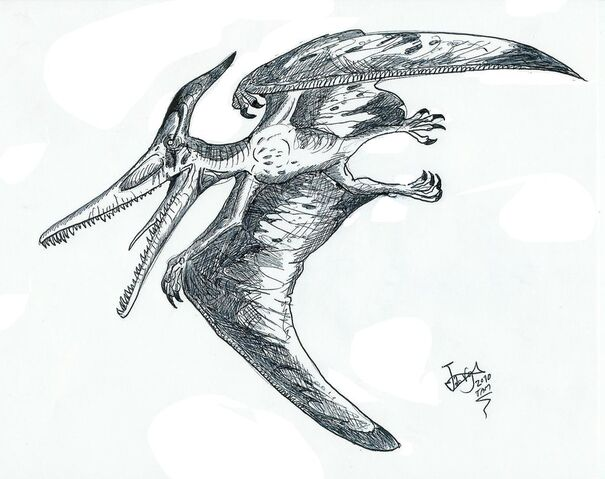 File:Ludodactylus by hodarinundu.jpg