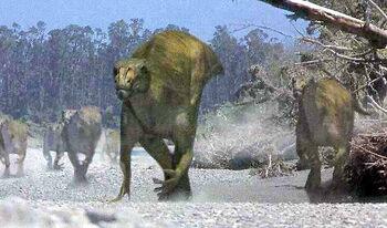 Muttaburrasaurus herd