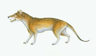 Mesonyx by TardisCat