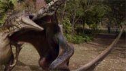 NewWorldPteranodon+UtahraptorFighting
