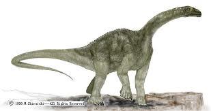 Titanosaurus illustration