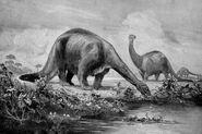 Brontosauri di Heinrich Harder