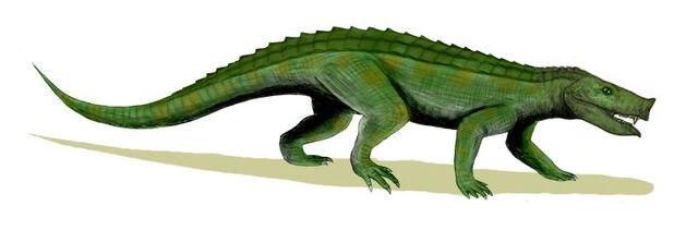 File:Notosuchus BW.jpg