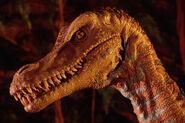 DAK velociraptor