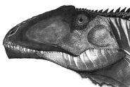 Giganotosaurus by fragillimus335-d5fg9iv