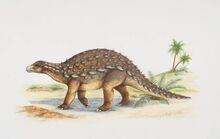 Dracopelta-0