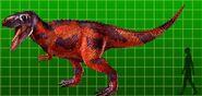 Albertosaurus (1)