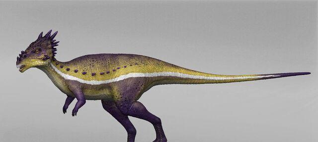 File:Dracorex dino dan.jpg