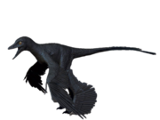 Microraptor colour