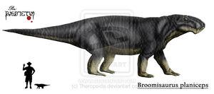 Broomisaurus