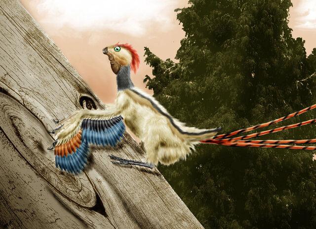 File:Epidexipteryx hui by durbed-d4p3n3x.jpg