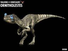 Ornitholestes z1