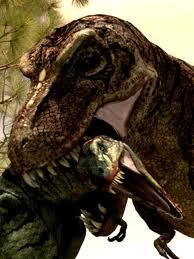 Rex vs Nano