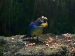 File:Postal bird.jpg