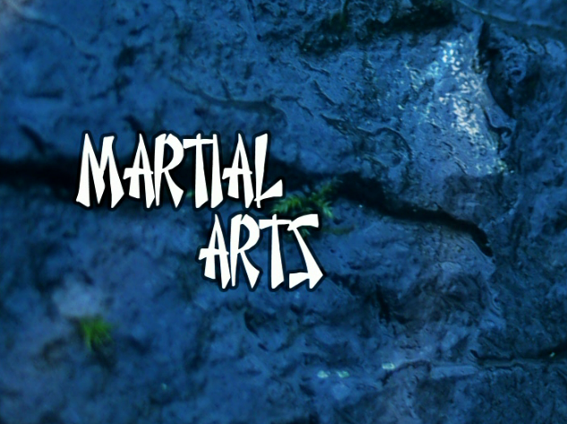 File:Martial arts.png