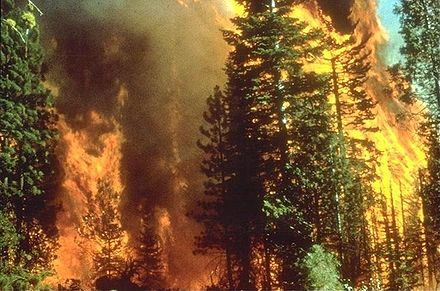 440px-Wildfire in California