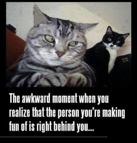 File:Awkward-moment-memes-9.jpg