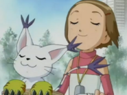Kari y Gatomon